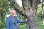 Hintergrundinterview Willi Linder | UmweltJournal (c) privat