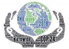 Weltklimagipfel in Katowice | UmweltJournal (c) www.iStock.om