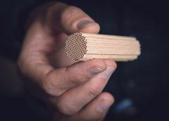 Das Trägermaterial des Katalysators erinnert in seiner Struktur an einen Schwamm. Der Katalysator läuft stabil und behandelt das Abgas auch bei niedrigen Temperaturen effektiv.