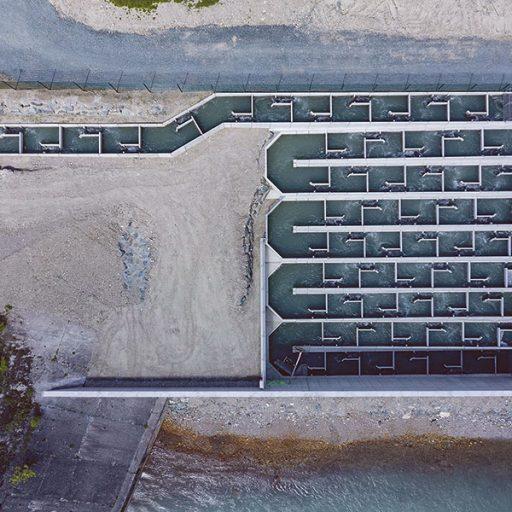 Fischtreppe | UmweltJournal (c) Verbund