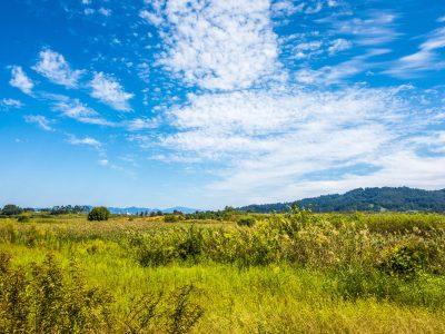 Foto: Ökosystem Landschaft Wiese Wolken - Bild von photogrammer7 auf Pixabay