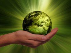 Foto: Nachhaltig wirtschaften