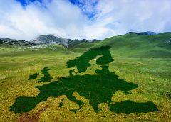 """Über 240 Unternehmen fordern österreichischen """"Green Deal"""""""