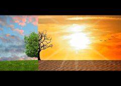 Foto: Klimawandel