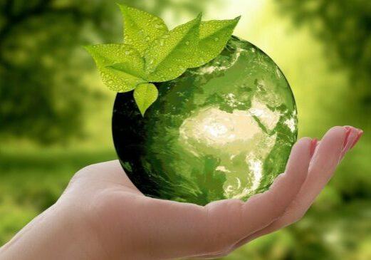 Foto: Naturschutz