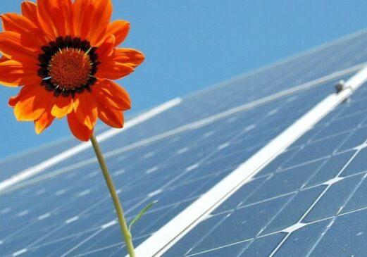 Foto: Photovoltaik