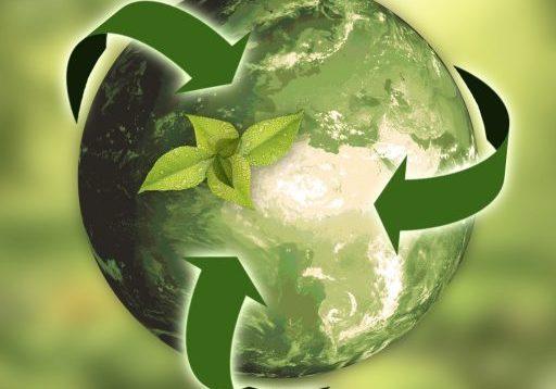 Umweltjournal Mediadaten 2020 Coverbild